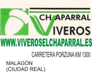 25. VIVIEROS EL CHAPARRAL